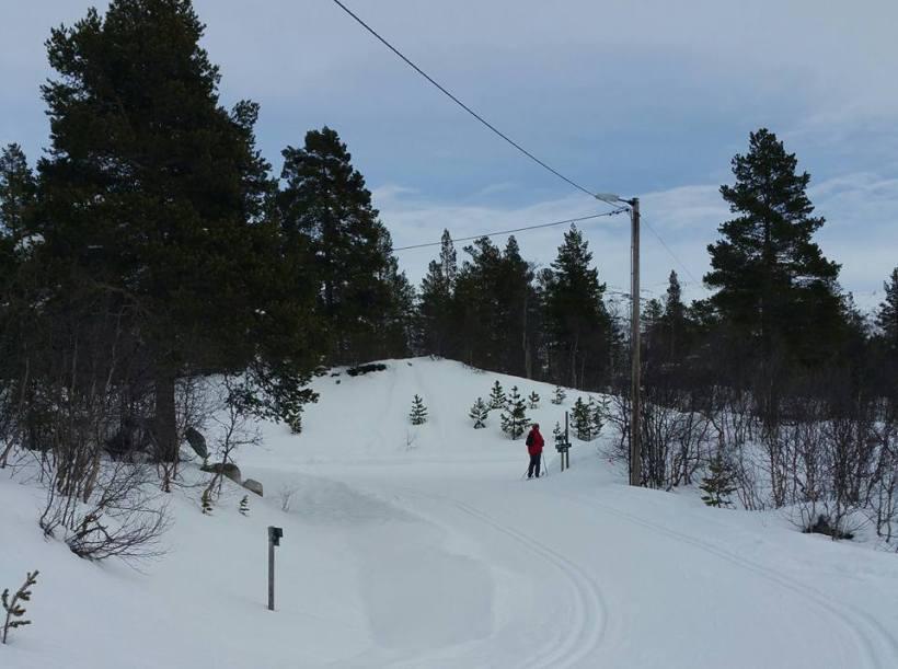 ski-mamma